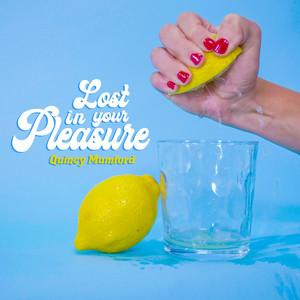 Lost in Your Pleasure cover art