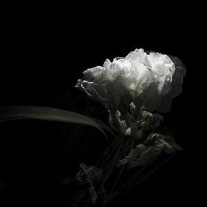 Deeper Love (feat. Adriel Denae) by Cory Chisel, Adriel Denae