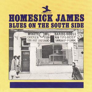 Homesick's Blues by Homesick James