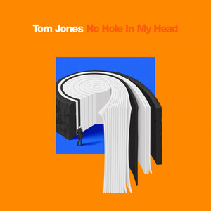 TOM JONES - No Hole In My Head