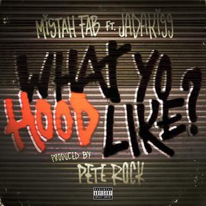 What Yo Hood Like (feat. Jadakiss) - Single