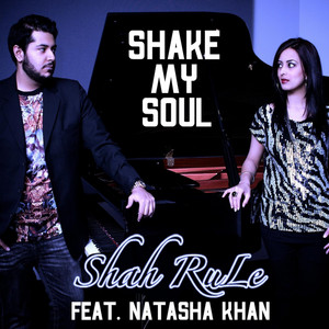 Shake My Soul cover art