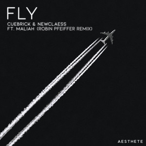 Fly (Robin Pfeiffer Remix)