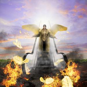 Fallen Angel cover art