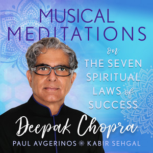 Musical Meditations on The Seven Spiritual Laws of Success Audiobook