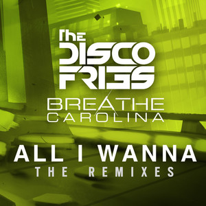 All I Wanna The Remixes