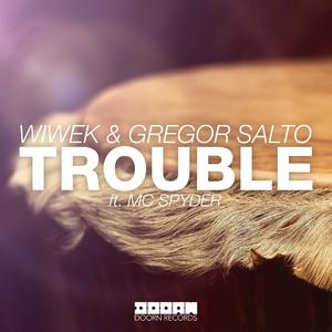Trouble (feat. MC Spyder)