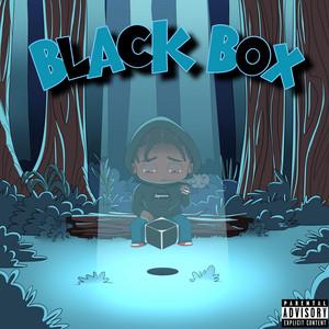 Black Box album