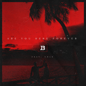 Are You Here Forever