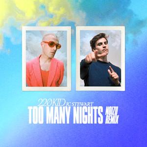 Too Many Nights (Noizu Remix)