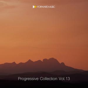 Progressive Collection, Vol. 13