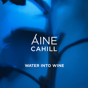 Water Into Wine cover art