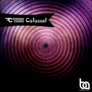 Colossal - Schroff Remix by Fortune Cookie, Schroff
