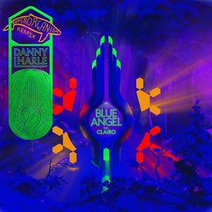 Blue Angel (Superorganism Remix)
