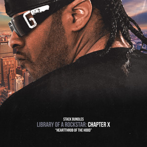 Library of a Rockstar: Chapter 10 - Heartthrob of the Hood