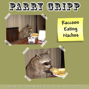 Raccoon Eating Nachos