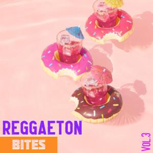 Reggaeton Bites Vol. 3