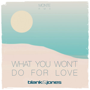 What You Won't Do for Love - Monte Remix by Blank & Jones, Monte