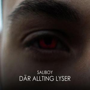 Genom alla problem by Saliboy