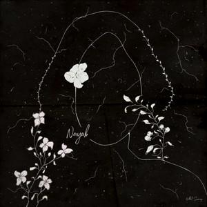 Nayab cover art