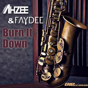 Burn It Down (Radio Edit)