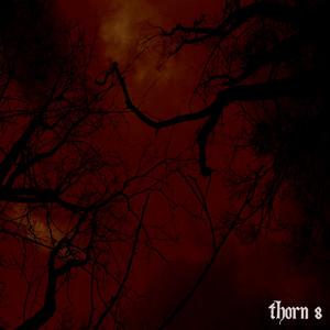 Thorn 8