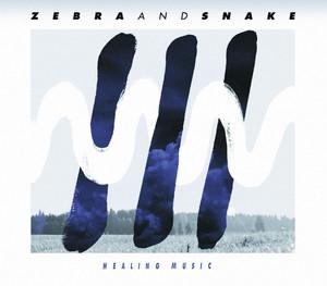 Burden by Zebra and Snake