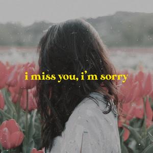 I Miss You, I'm Sorry