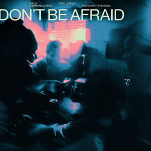 Don't Be Afraid (feat. Jungle) [Picard Brothers Remix]