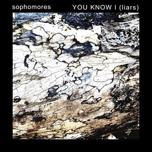 You Know I (Liars) album