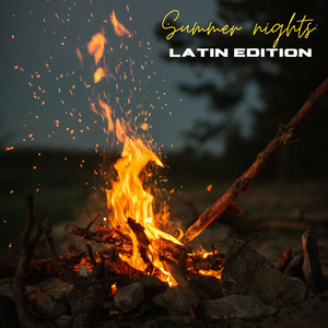 Summer Nights: Latin Edition