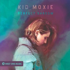 Perfect Shadow [The Gaslamp Killer] cover art