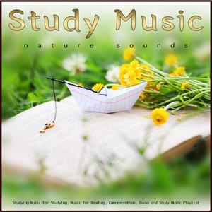Study Music: Guitar and Zen Garden Sounds