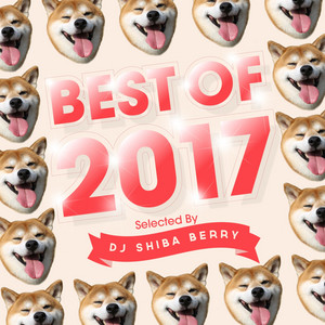 BEST of 2017 selected by DJ Shiba berry