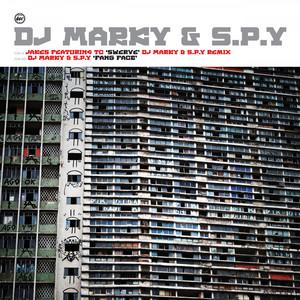 Swerve (DJ Marky & S.P.Y Remix) / Fang Face