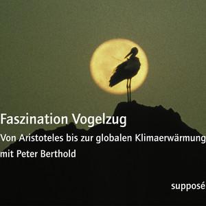 Faszination Vogelzug (Von Aristoteles bis zur globalen Klimaerwärmung) Audiobook