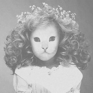 Destroy Me by Mr.Kitty