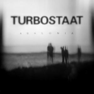 Der Zeuge by Turbostaat