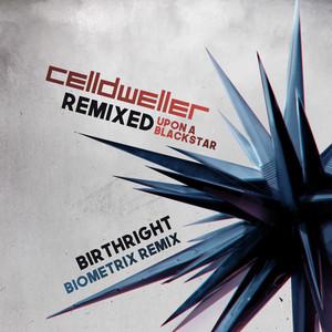 Birthright (Biometrix Remix)