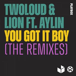 You Got It Boy (The Remixes)