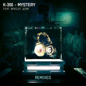 Mystery (Remixes)