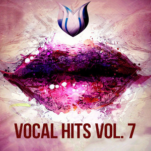 Vocal Hits, Vol. 7