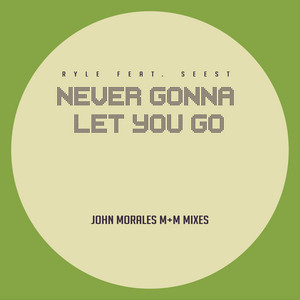 Never Gonna Let You Go - M+M Dub Mix cover art