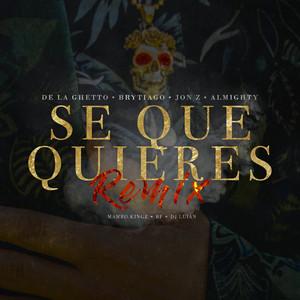Sé Que Quieres (feat. Brytiago, Jon Z & Almighty) [Remix]
