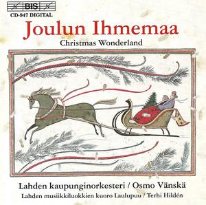 Wild Christmas (sikerma /potpurri)