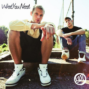 What You Need EP