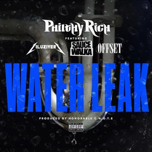 Water Leak cover art