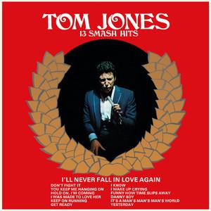 13 Smash Hits album