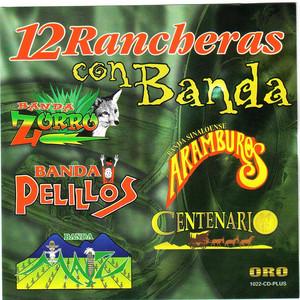 Por Las Parrandas cover art