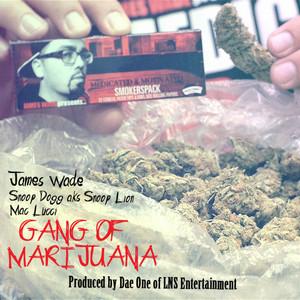 Gang Of Marijuana (feat. Mac Lucci) - Single